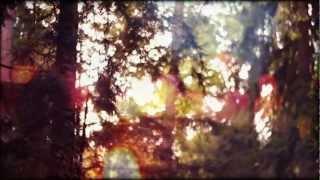 Tiemo Hauer - Die Kapelle (Offizielles Musikvideo)