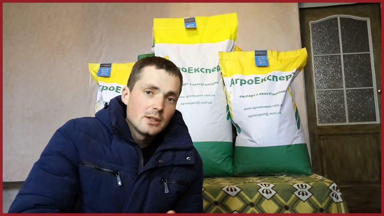 Шелуха лузга семечки подсолнечника купить в Крыму - YouTube