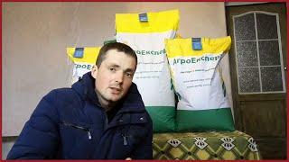 видео Описание сортов кукурузы