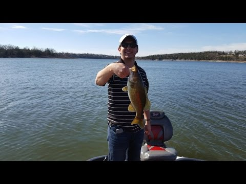 Table rock lake video fishing report march 29 2017 youtube for Table rock lake fishing guide