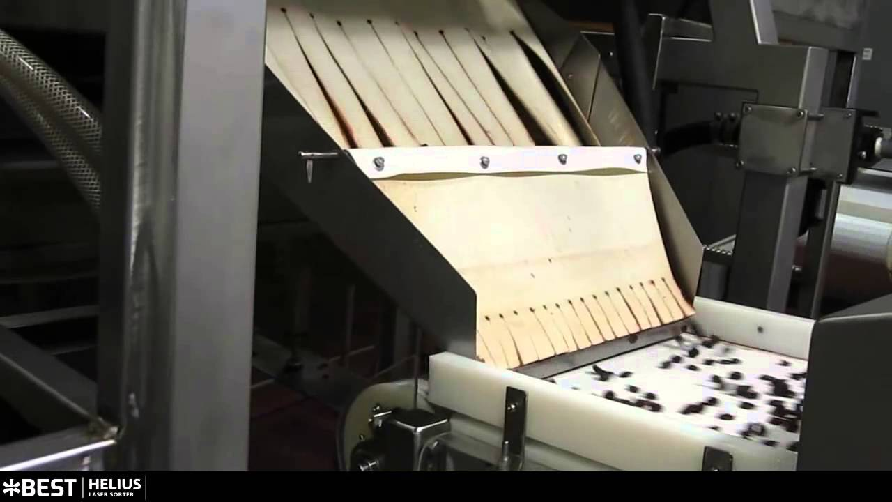 Dried cherry sorter Helius - TOMRA Sorting