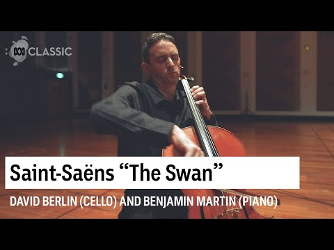 The Swan By Saint-Saëns Performed By David Berlin And Benjamin Martin