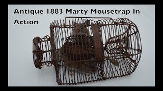 Antique1883 MARTY Wire Cage Mouse Trap In Action. This 134 Year Old Trap Works Great