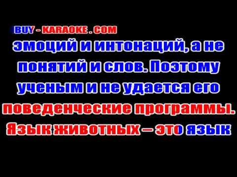 Россия » Скачать фильмы торрент бесплатно