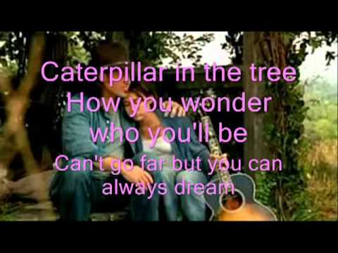 Miley Cyrus Butterfly Fly Away lyrics Miley Cyrus ...