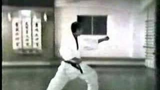 Taikyoku Shodan Shotokai Karate-do