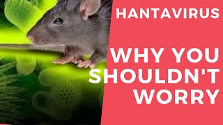 Hantavirus Is One Thing You Don't Need To Worry About Right Now, As Long As
