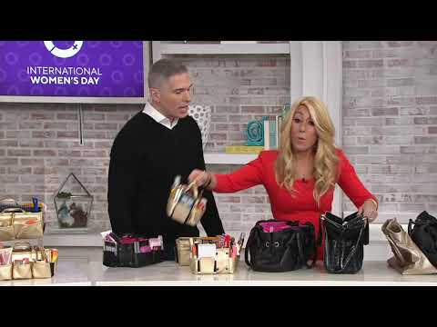 84c9f8b475 Set of 2 Ready Set Go Expandable Bag Organizers by Lori Greiner on ...