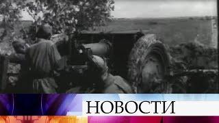 Волонтеры из Нижнего Новгорода отправились к местам, где в годы ВОВ шли ожесточенные бои.