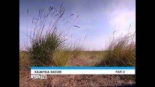 Природа Калмыкии DVB by kuzmichm2196