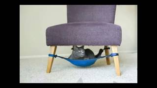 Гамак для кота (Hammock to Cat)