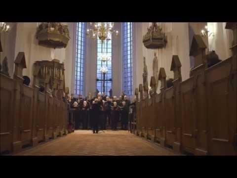 150 Jahre Schlacht von Düppel Leon Tscholl  Concert in Haderslev