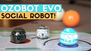 Ozobot Evo Review