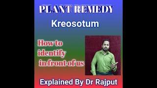 Kreosotum homoeopathy medicine explained dr rajput