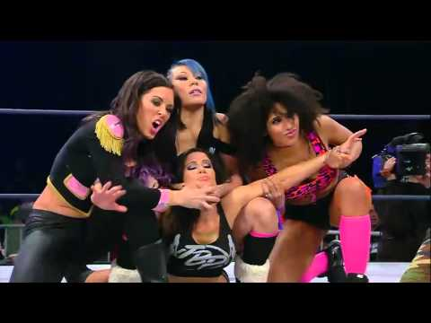 The Dollhouse Send Message to the Knockouts Division