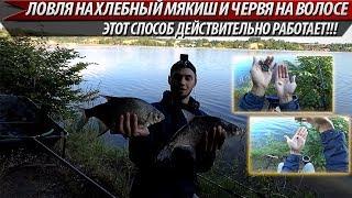 ОБЯЗАТЕЛЬНО ПОПРОБУЙ ЭТОТ СПОСОБ!!! ЛЕЩИ КЛЮЮТ ДУПЛЕТАМИ!!! Рыбалка на фидер. Рыбалка 2019