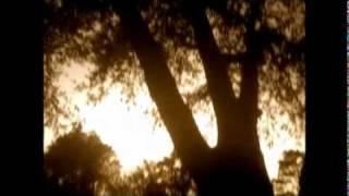 One Headlight (Acoustic Cover) by Ryan Sunagawa