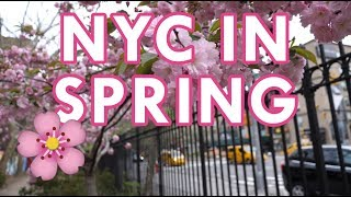 Best Spring and Secret Places NYC