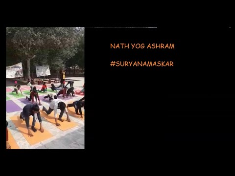 yoga for kids surya namaskar  youtube