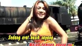 Dangdut Mix Erma Farany - Abang Roni