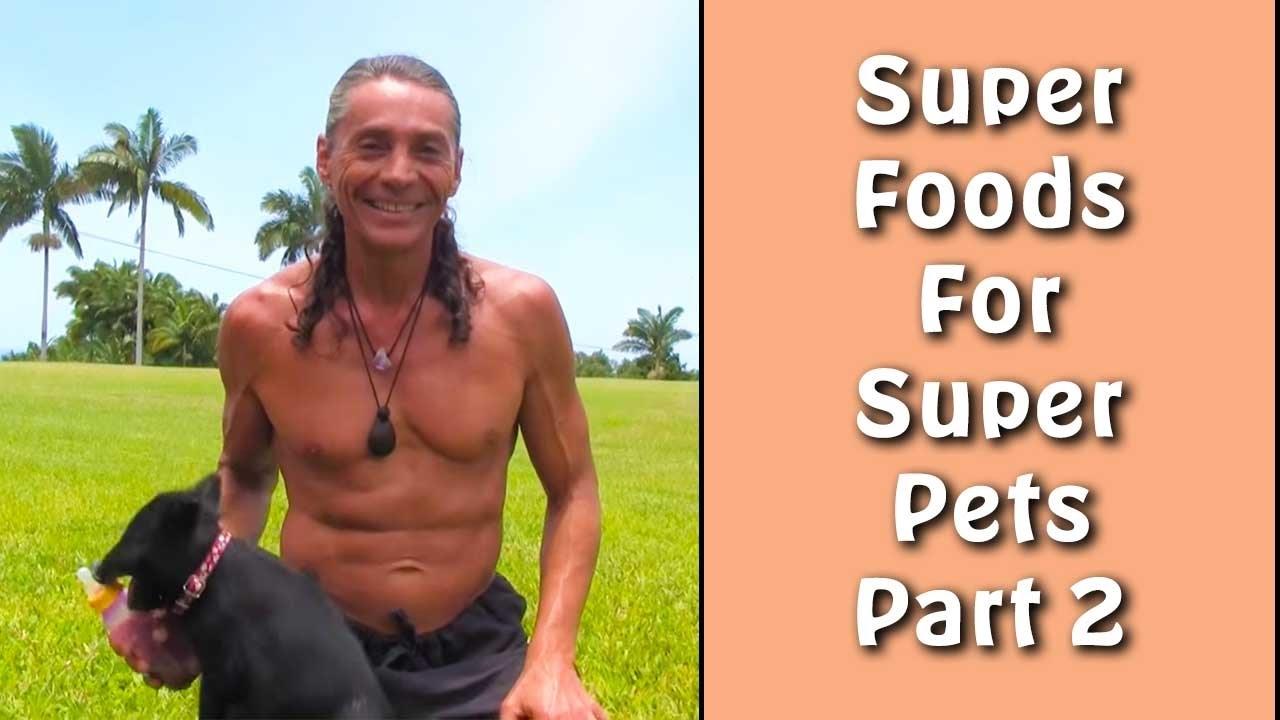 Super Foods For Super Pets Part 2 I Dr. Robert Cassar
