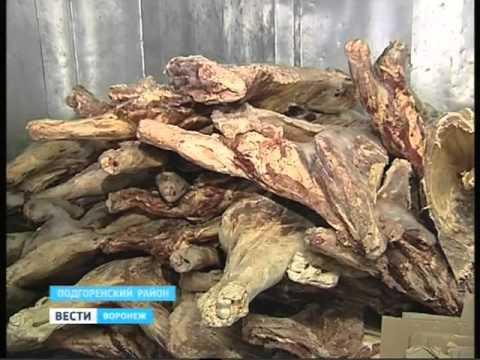 03 03 2016 Сагуновский мясокомбинат закрыт из за множественных нарушений