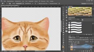 Рисуем рыжего кота в Фотошоп - Часть 2
