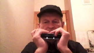 Русская народная песня -  Чёрный  Ворон - Hohner Chrometta12
