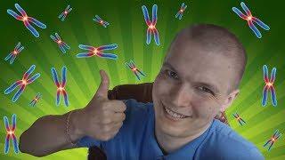 100 000 хромосом