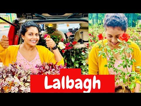 LALBAGH BANGALORE NURSERY | Lalbagh Botanical Garden Bangalore | CHANDRAMUKHI Moment | Tamil Vlog