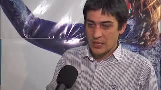 MARTIN CARNAGHI   UNIDAD CIUDADANA   BALANCE ELECCIONES PASO 2017