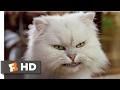 Stuart Little 2 (2002) - Silver Lining Scene (4/10)   Movieclips