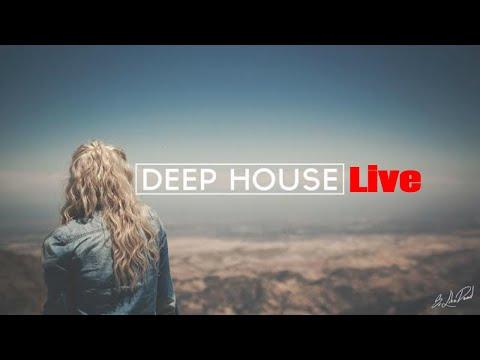 TROPICAL HOUSE - RADIO 24/7 LIVE 🌴 Música Relajante | Gym | Bares | Café | Restaurantes | Shopping 🌴
