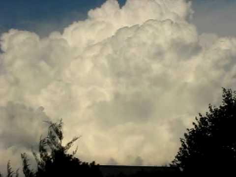 Cumulus congestus sistem and isolated cumulonimbus calvus ...