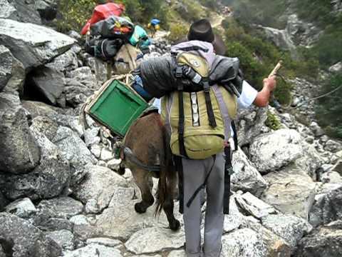 Peruanische Eseltreiber - YouTube