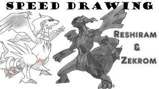 Speed Drawing Reshiram and Zekrom Pokémon NB NB2
