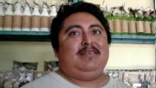 Tulum 02 De Junio, Nota 3, Cooperativa Mielera De Macario Gomez..mpg