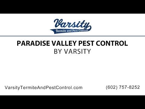 Paradise Valley Pest Control | Varsity Termite & Pest Control
