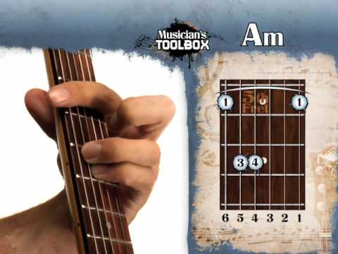 How to play the Am barre chord on guitar Am bar chord - YouTube