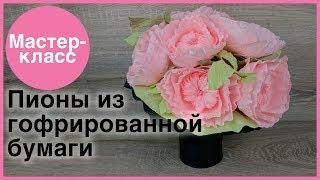 Пионы из гофрированной бумаги. Мастер-классы на Подарки.ру