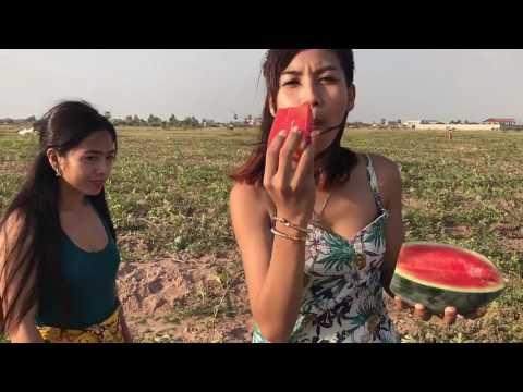 Mujeres cosechando sandias en el Rancho