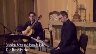 Die liebe Farbe__Schubert (Guitar)