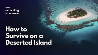 How to Survive Being Stranded on a Deserted Island, According to Science