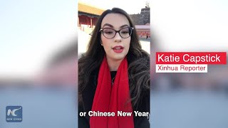 Celebrating Chinese New Year at Forbidden City