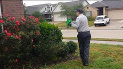 Our 4-Step Residential General Pest Control Service