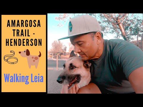 Henderson Life: Walking Leia on the Amargosa Trail
