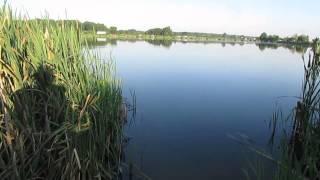 Рыбалка!!!Супер наживка на карася в жару.Лучший результат .(, 2015-07-06T21:01:46.000Z)