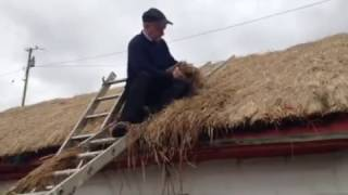 Thatching - Michael Gallagher