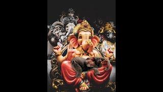 #elephant_attack_kerala #elephant_emotional_video #elephantemotiona  Elephant Died At Velliyar River