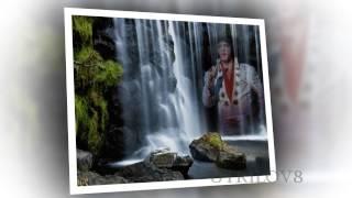 Elvis Presley - Snowbird  View 1080 HD
